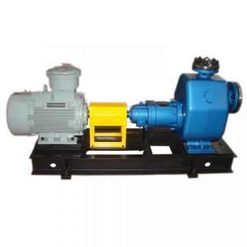 Vickers PVB5-RSW-20-CM-11-PRC Piston Pump PVB